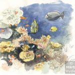 Poissons au Musée Océanographique fish, watercolour, aquarelle, colorful, coraux, coral