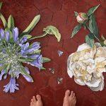 Agapanthe & la Pivoine - peintes sur bois on wood, bees, abeilles